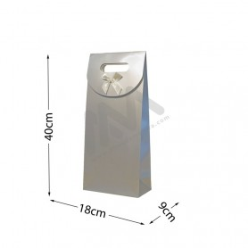 Silver Punched handle Paper Bag 210 g/m² 18x40x9 - 144