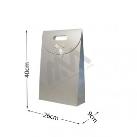 SIlver Punched handle Paper Bag 210 g/m² 26x40x9 - 144